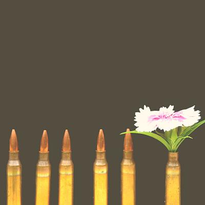 Entwaffnung